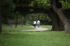 Curve (mrhayata) Tags: tree grass japan garden geotagged tokyo blog couple 日本 東京 curve 木 minato chuo hamarikyu shimbashi shiodome 新橋 浜離宮 汐留 庭園 東京都 港区 中央区 小道 カップル mrhayata geo:lat=35659284 geo:lon=139765980