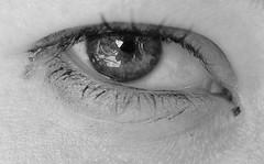Ampia visione (Oriana Milani (poco tempo)) Tags: bw white black macro eye up reflex nikon close bn bianco nero occhio riflesso d80 neroamet