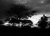 IMG_0652 (pmenge) Tags: contraluz nuvens arvores cocheira xti