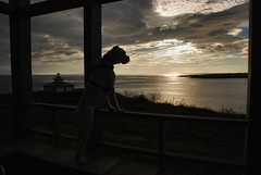 Looking Sea Sunset (knaranjok) Tags: sunset sea yoko cantabrico