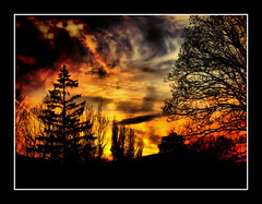 Forest Fire (Jonny Jelinek) Tags: trees sunset tree clouds forest photoshop spectacular fire austria sterreich sonnenuntergang silhouettes burning feuer wald bume baum brennen blueribbonwinner burningclouds hiddentreasure tonemapped bej totalphoto golddragon mywinners abigfave platinumphoto anawesomeshot theunforgettablepictures platinumheartaward elitephotography theperfectphotographer awardtree schlosshernstein