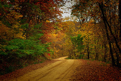 German Valley Road (Dan Krecklow) Tags: autumn wisconsin smrgsbord mondovi buffalocounty photographybydankrecklow germanvalleyroad