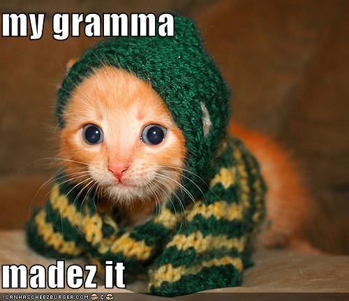 funny-pictures-kittens-grandmother-made-a-sweater