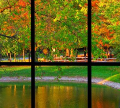 Lookin' Outside My Window (dlco4) Tags: autumn trees friends color art fall window nature water leaves reflections pond looking foilage soe godandnature aclass oohlala thebigone throughtheseeyes justonelook cherryontop supershot mywinners abigfave anawesomeshot impressedbeauty impressedbyyourbeauty flickrdiamond citrit theunforgettablepictures diamondstars eliteimages unforgettablepictures betterthangood everydayissunday perfectphotographer awesomepictureaward goldstaraward highqualityimages rubyphotographer screamofthephotographer jediphotographer panoramafotografico theglocalproject artofimages tophonorofphotographerparadise flickrsmasterpieces inspiredbyyourbeauty micarttttworldphotographyaward