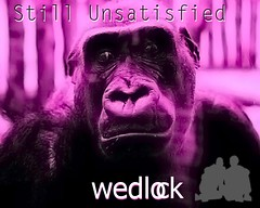 Still Unsatisfied-digital single.
