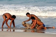 Playing on the beach (martien van asseldonk) Tags: man beach srilanka trincomalee earthasia flickrlovers martienvanasseldonk