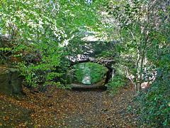 Bridge over Calverley Cutting (Tim Green aka atoach) Tags: cutting calverley