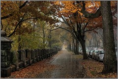 I always did love the benches (Ahmad A Karim) Tags: nyc newyork fall columbiauniversity