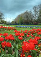 / Memories in colours \ (Ciu) Tags: park parco flower green landscape perspective fiori paesaggi londra bethnalgreen prospettiva laclassenonacqua colorphotoaward fullcolours