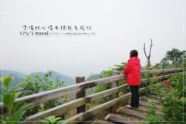 【分享】穿上山頂鳥羽絨衣,在寒冬中溫暖的旅行