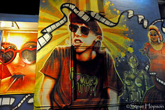 I Heart Video (Steve Hopson) Tags: nightphotography usa austin video texas murals lolita austintexas publicart lollipop slacker pinkflamingos gomer ilovevideo iluvvideo iheartvideo austinmurals andmetropolis