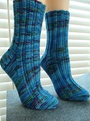 jitterbug parrot socks2