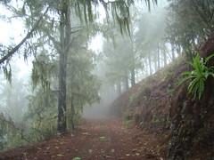 Gran Canaria inviernos en la cumbre 13 paisajes (Rafael Gomez - http://micamara.es) Tags: en paisajes la canarias gran isla islas canaria cumbre inviernos