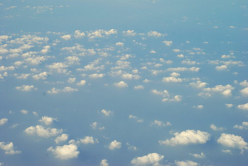 Cotton Candies or Clouds