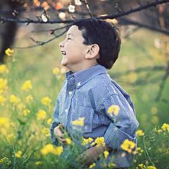 All Smiles (whitneybee) Tags: gabriel field bokeh 85mm mustard mountainview minimixr omarsson