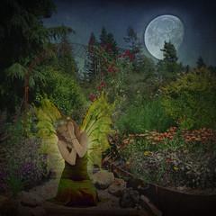 Midnight Awakening (daybeezho) Tags: flowers moon garden fairy faery memoriesbook etherealworld awardtree skeletalmess wingedfantasies iniciaticaward
