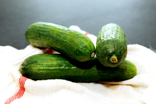 persian, seedless cucumbers