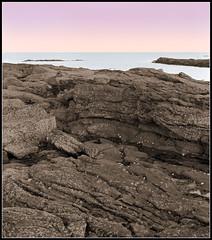 Portrait of a Sunset (spodzone) Tags: pink blue sea colour film beach nature water yellow rock composition photoshop manipulated landscape coast scotland sandstone fife northsea distance toned tilt largeformat movements colourized kingsbarns fomapan shenhao fronttilt