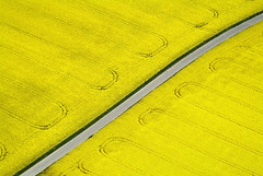 Flowering canola fields (Aerial Photography) Tags: road flower field yellow by germany bavaria aerial diagonal flowering agriculture fs canola obb colourlicious moosburgadisarlkrfreisin