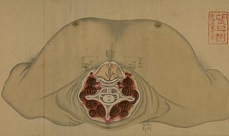 Morbid Anatomy: Yet MORE on Japanese Anatomical Charts!