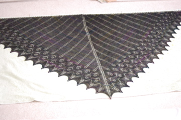 Icarus Shawl Blocking