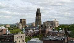 Yale University skyline, New Haven, Connecticut (ali eminov) Tags: universities yaleuniversity newhaven connecticut dwightchapel harknesstower