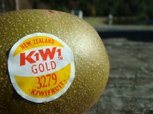 Kiwi fruit in the Land of the Kiwis