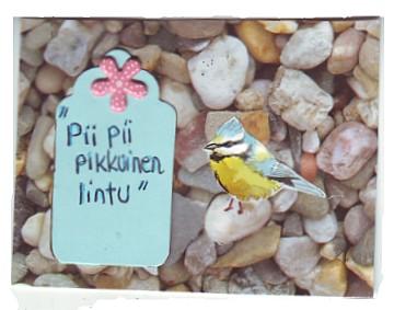 Pii pii pikkuinen lintu