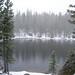 Lake Stewart Photo 12
