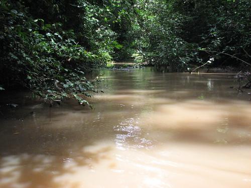 The Tutu River