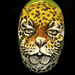Leopard Mini Movie! por hawhawjames