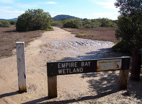 Empire Bay Wetland, off Myler Avenue Empire Bay