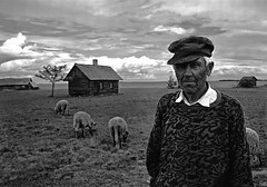 Old Man's Sheep (Kris Haamer) Tags: old portrait white man black male canon geotagged happy estonia sheep monochromatic age tamron neeme harjumaa vanamees thelandthatbelongs krishaamer ihasalu