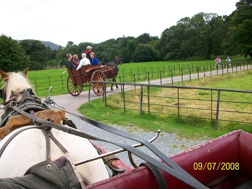 Ireland - Killarney National Park - Jaunting Car Ride