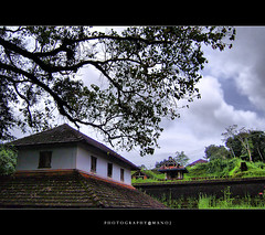 My village.. (Manoj Aswathi's Travel& Photography.) Tags: sky tree clouds temple kerala keralam malabar godsowncountry theyyam northkerala smalltemple kasargode kaavu keralavillage platinumheartawards kanhangad aswathi233 mtv233 photographymanoj manojphotography echikanam