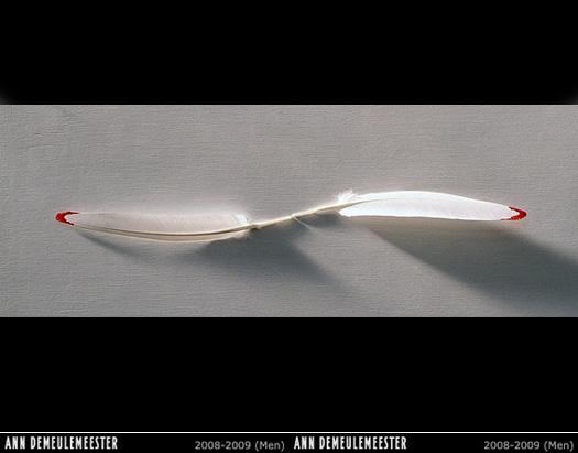 adm_2008-2009_m-25