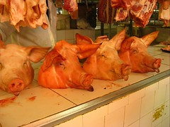 Your standard pig heads.