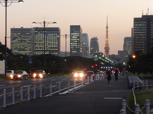 Downtown Tokyo, close to Imperial Palace