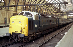 55012 Kings Cross 26.5.80 1L44 (Paul Bettany) Tags: kingscross napier deltic englishelectric class55 type5 55012 crepello