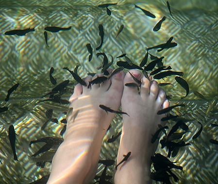 Как я была кормом для рыб. автор gagara