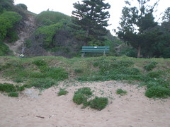 Seat (cobalt.penguin) Tags: beach dunes sydney peninsula avalon barranjoey