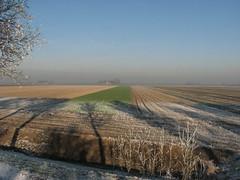 Winter in Nederland (Marianne de Wit) Tags: winter dutch landscape nederland wintertime dutchlandscape dutchwinter nationalparkdehogeveluwe nederlandsewinter nederlandselandschappen
