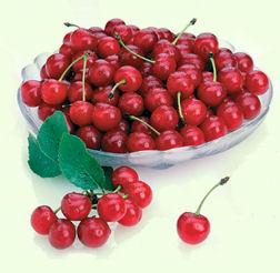 cherry_bowl