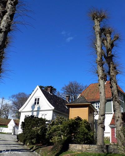 Gamle Bergen 4