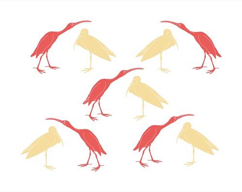 land birds 5