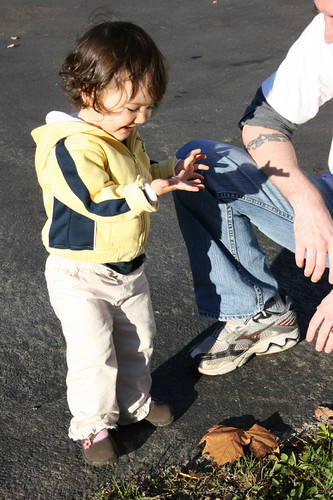 Rhinebeck 2008: Found a bug!