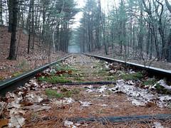 abandoned railroad (MasterGeorge) Tags: road railroad abandoned train woods tracks rail trail