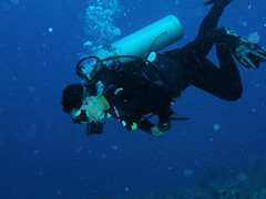 into the deep blue (kamphora) Tags: grandcayman caymans