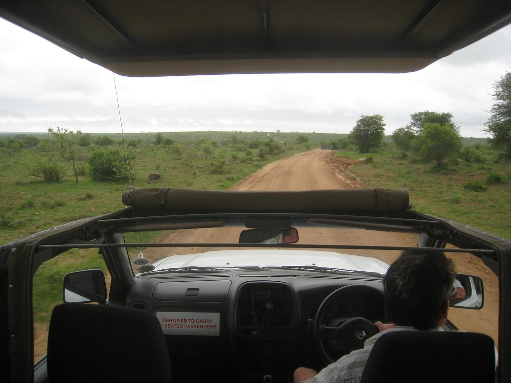 The view from our 4x4 safari truck