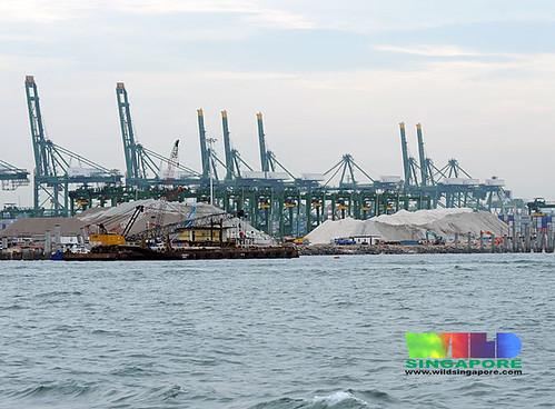 Reclamation at Pasir Panjang Container Port